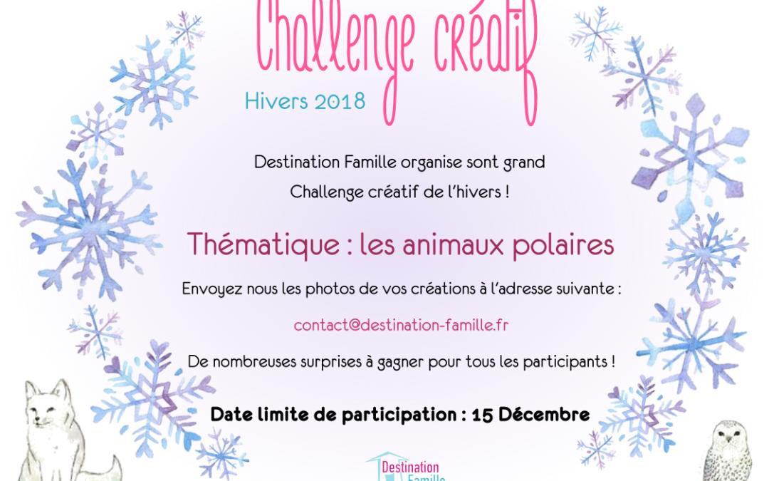 Challenge créatif pour les enfants de cet hivers 2018